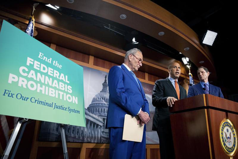 In a landmark decision that some still see as a long-shot, Democratic senators have released a draft of a bill that would decriminalize cannabis natio